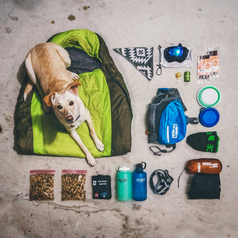 flatlay of camping gear specifically for a dog, including a jacket, dog sleeping bag, backpack, and more